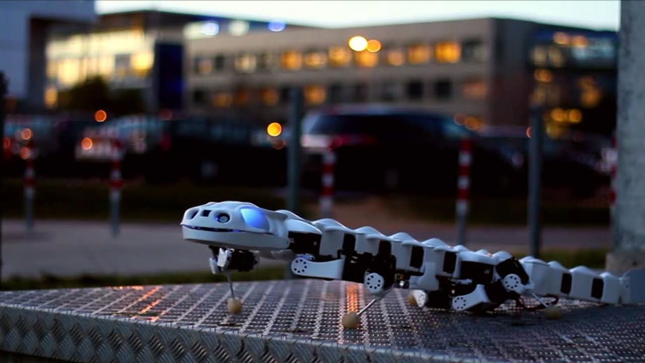 Salamanders Are Cool... Robots Are Cool... This Salamander Robot is Awesome!