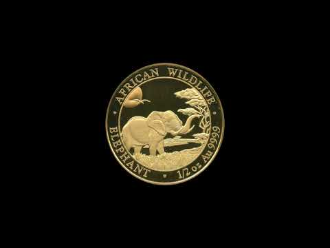 1/ 2 oz Somalia Elefant Gold -  2019