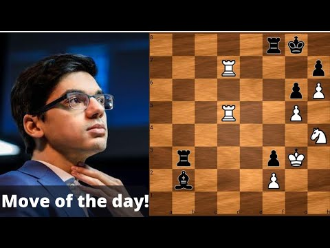 Download Anish Giri's Move Of The Day | Tata Steel Masters 2021 | Chess Games