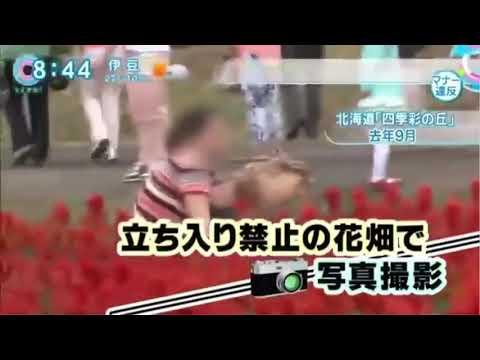 【資料】【中国人観光客】マナー違反の実態