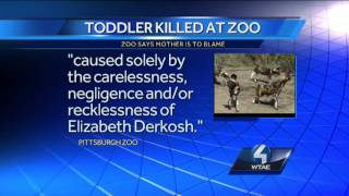 Pittsburgh Zoo blames mother of boy who died in African painted dogs exhibit