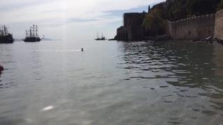 Серфинг в Турции. Обучение серфингу в Аланье. Турция. Прямой эфир || RestProperty