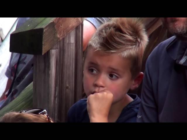 Reintje en haar voskes - Kinderboerderij
