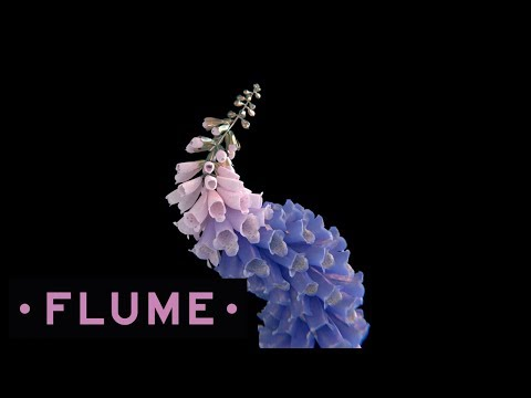 Flume - Tiny Cities (Ft. Beck)