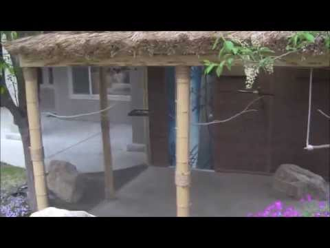Gouldian Finch Heated Insulated Outdoor Tiki Aviary