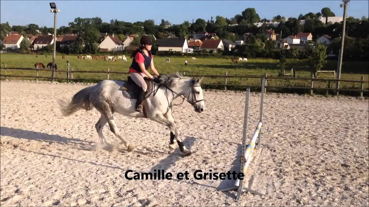 Cours de saut du 3 juin galop 4 5 youtube - Frison saut d obstacle ...