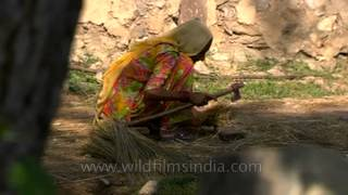 An old lady making broom in a village in Uttar Pradesh