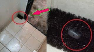 Phát hiện camera trong bàn chải nhà vệ sinh