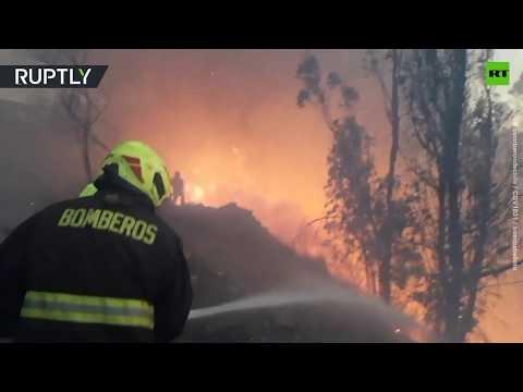 Chilean firefighters battle forest blaze in Valparaiso