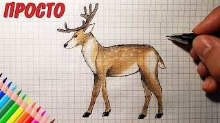 Как нарисовать ОЛЕНЯ (Full HD 1080р) Рисунки для детей