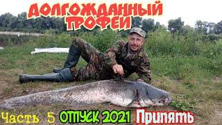Отпуск 2021 на Реке Припять Трофейный СОМ пойман Часть 5