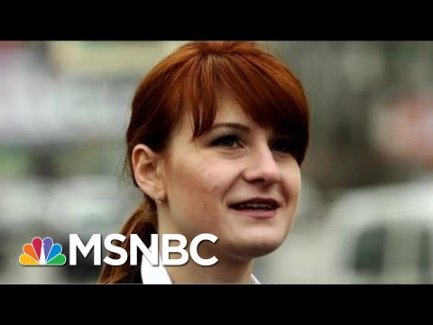 Extent Of Maria Butina's Influence On The NRA Still Being Explored | Rachel Maddow | MSNBC