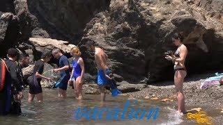 Enjoy the sea! Summer at the sea