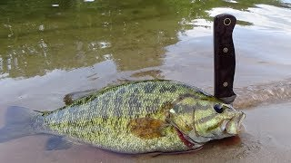 Survival Fishing - How To Catch And Cook Fish - On a Stick