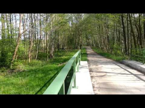 die erste Brücke
