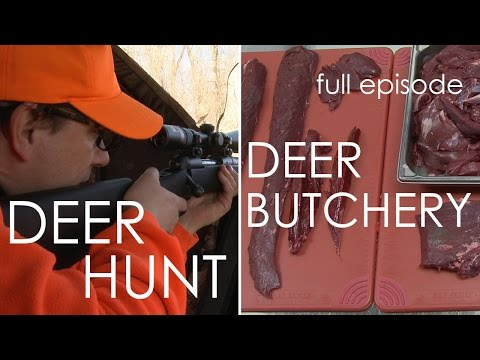 Wisconsin Foodie - Deer Hunt | Deer Butchery