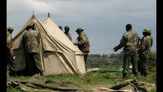 Kenya Forest guards destroy crops after farmers allegedly failed to pay bribe