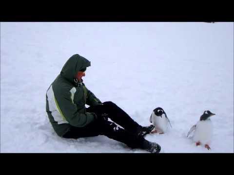 Reis Antartica maart 2016