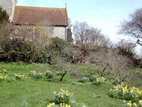 Alfriston Clergy House Daffodils & Flood