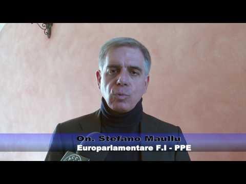Direttiva armi: intervista onorevole Maullu