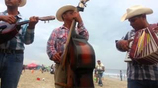 CHIRRINES en la playa Rosarito ( la yaquesita )