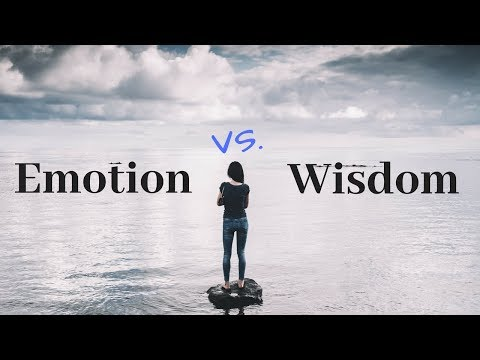 WISDOM IS YOUR WEAPON TO BEAT NARCISSISTIC ABUSE