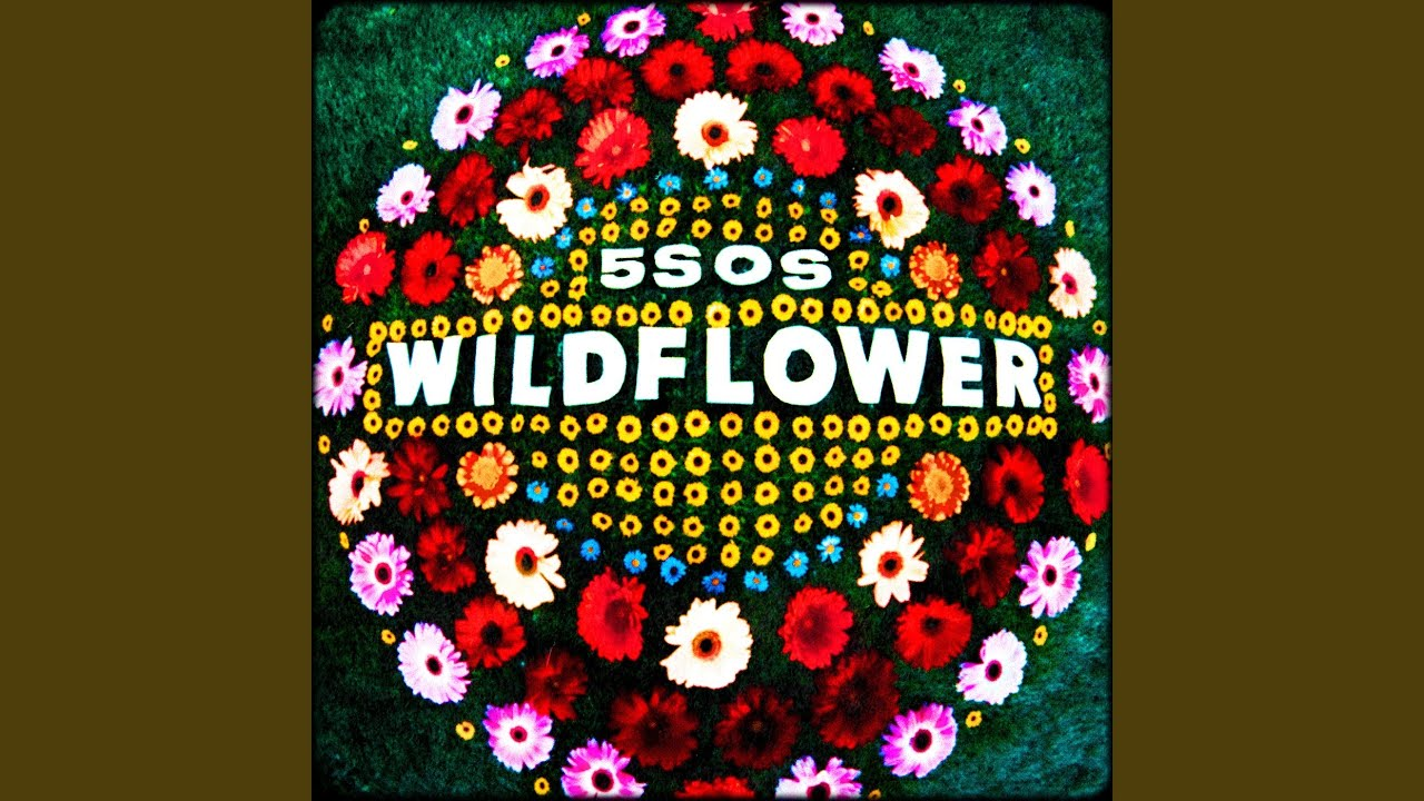 Arti Lirik dan Terjemahan 5 Seconds of Summer - Wildflower
