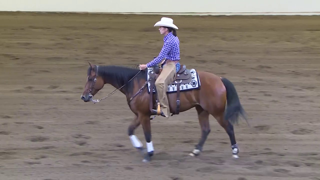 2017 Calgary Stampede Working Cow Horse Classic Non Pro
