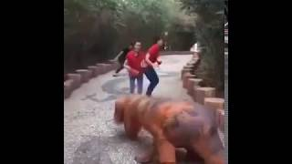 ожившие динозавры , прикол , magari prikoli