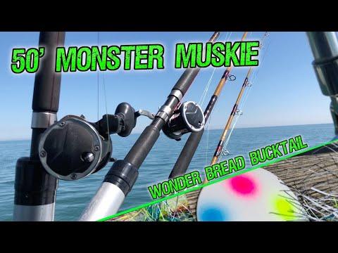 JUMBO St Clair MUSKIE - FishLSC Charters & St Clair Hound