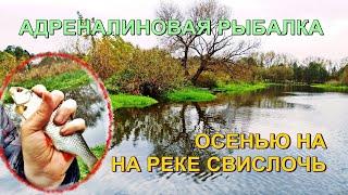 АДРЕНАЛИНОВАЯ РЫБАЛКА на реке Свислочь осенью 2020 Рыбалка в Беларуси Fishing in Belarus