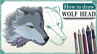 How to draw a WOLF HEAD - Mink