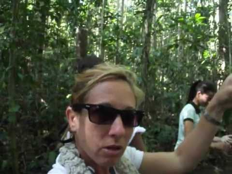 Tour Guide in Brazil, Bahia I