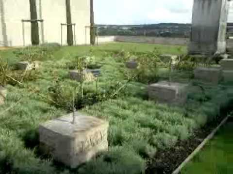 Monument famille Emir Abdelkader.mp4