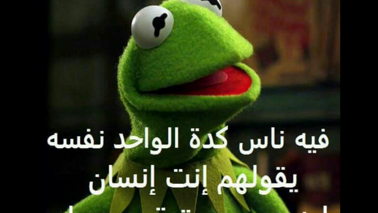 Auu >> الضفدع كيرمت 4 kermit the frog - YouTube