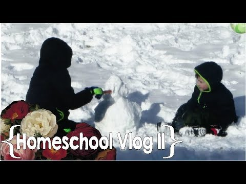 Snow, Packages & 100 Push Ups Challenge ║ Hang Out with This Homeschool Mom of 8 │ School Week 11