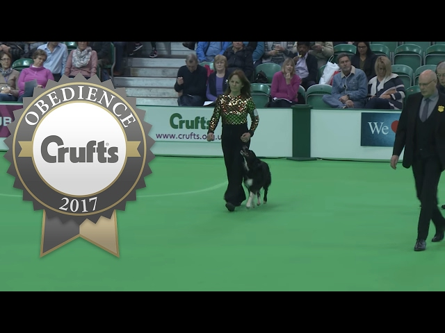 Obedience Championship - Bitches - Part 14 | Crufts 2017