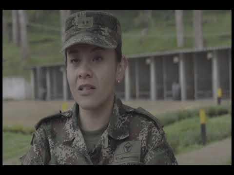 Héroes de cuatro patas: así capacitan a los perros del ejército