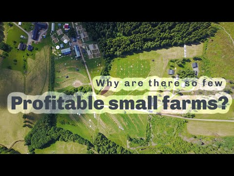 Why are there so few profitable Permaculture Farms?