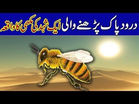 Prophet Muhammad SAW & a Hony Bee I Makhi Ki Kahani I UrduHindi Rohail Voice