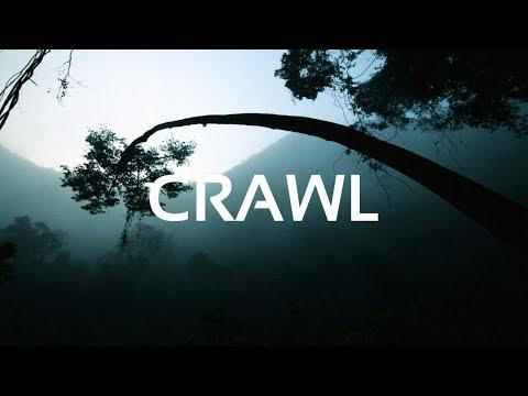 TYNE - Crawl