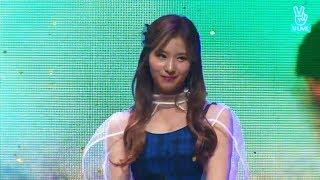 Download [CLEAN MR Removed] TWICE (트와이스) Turtle (거북이) | Likey Showcase Mp3