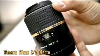Tamron 60mm f/2 macro lens review (with samples)
