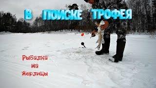 В поиске трофея Рыбалка на жерлицы на реке Керженец Нижегородская обл