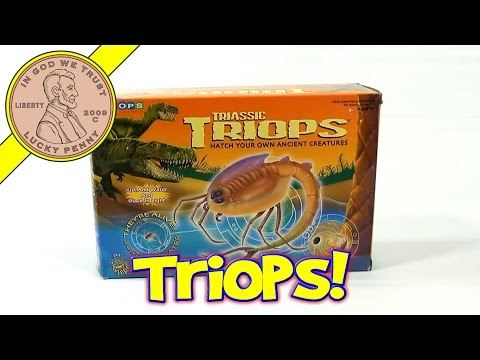 Triassic Triops Hatch Your Own Ancient Creatures Kit, by Toyops (Day 1)