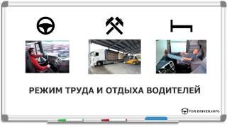 видео Автомобильный ежедневный онлайн журнал