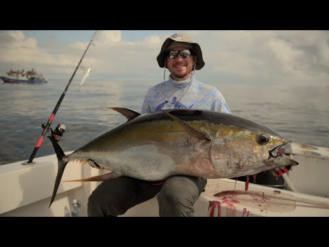 PANAMA - YELLOWFIN TUNA - STICKBAIT - POPPER - ANDREE'S EXPEDITIONS
