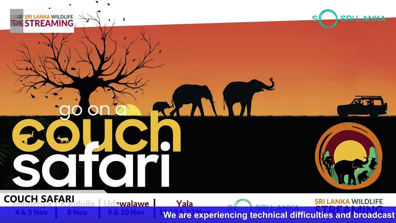 Sri Lanka Wildlife Streaming - Udawalawe (9th November)