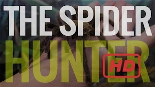 History Channel Documentaries Spiders - The Spider Hunter, Full Length Documentary
