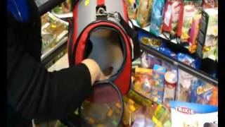 Зоо товары - Переноска сумка-домик для кошек и собачек